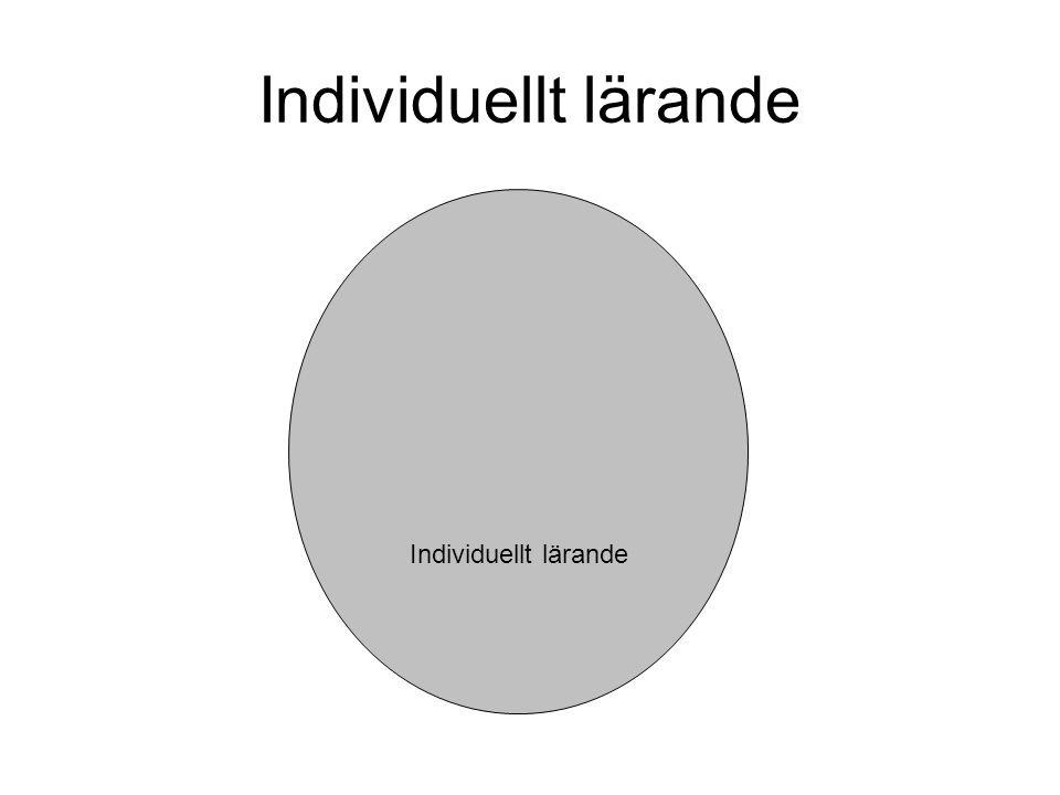 Individuellt lärande