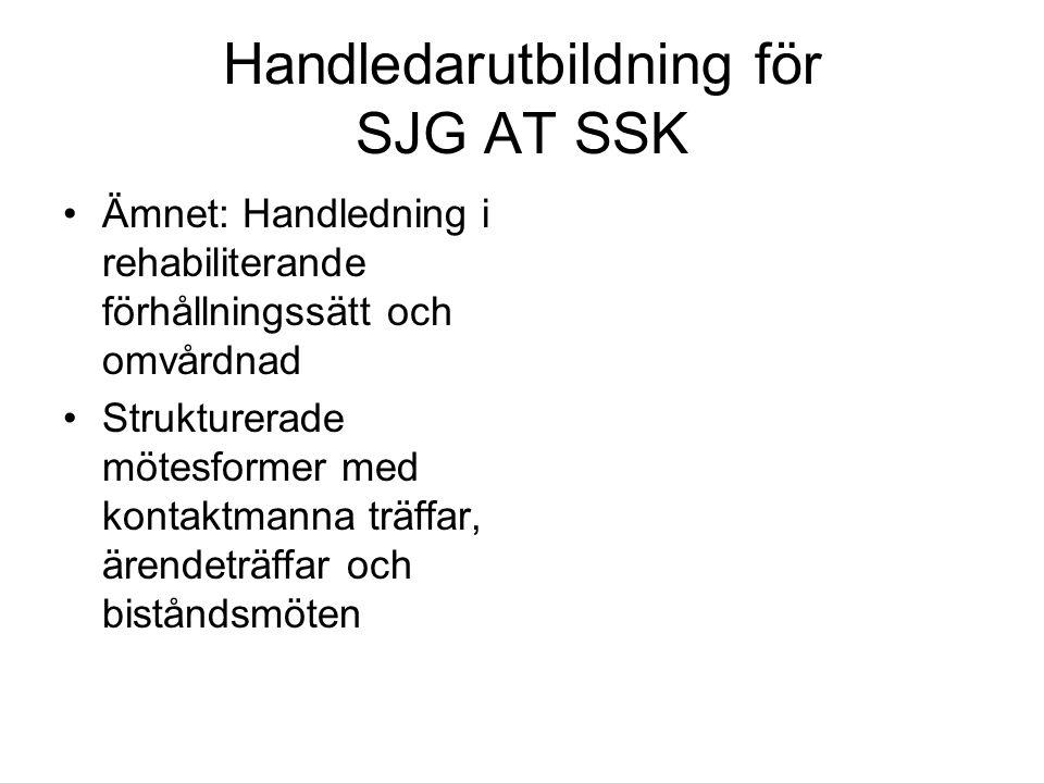 Handledarutbildning för SJG AT SSK Ämnet: Handledning i rehabiliterande förhållningssätt och omvårdnad Strukturerade mötesformer med kontaktmanna träf