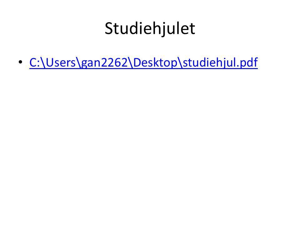 Studiehjulet C:\Users\gan2262\Desktop\studiehjul.pdf