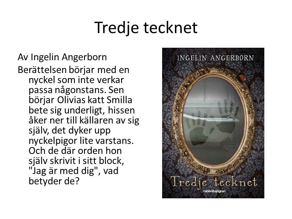 Tredje tecknet Av Ingelin Angerborn Berättelsen börjar med en nyckel som inte verkar passa någonstans.