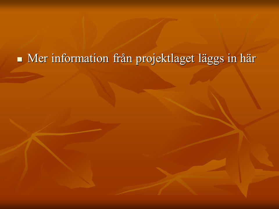 Mer information från projektlaget läggs in här Mer information från projektlaget läggs in här