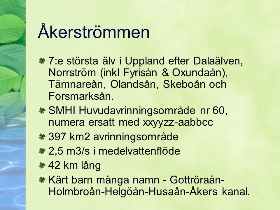 Åkerströmmen 7:e största älv i Uppland efter Dalaälven, Norrström (inkl Fyrisån & Oxundaån), Tämnareån, Olandsån, Skeboån och Forsmarksån. SMHI Huvuda