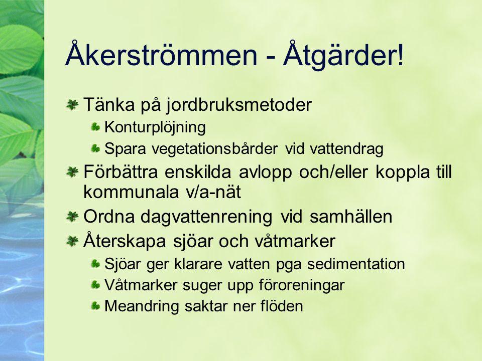 Åkerströmmen - Åtgärder! Tänka på jordbruksmetoder Konturplöjning Spara vegetationsbårder vid vattendrag Förbättra enskilda avlopp och/eller koppla ti