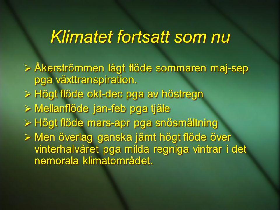 Klimatet fortsatt som nu  Åkerströmmen lågt flöde sommaren maj-sep pga växttranspiration.  Högt flöde okt-dec pga av höstregn  Mellanflöde jan-feb