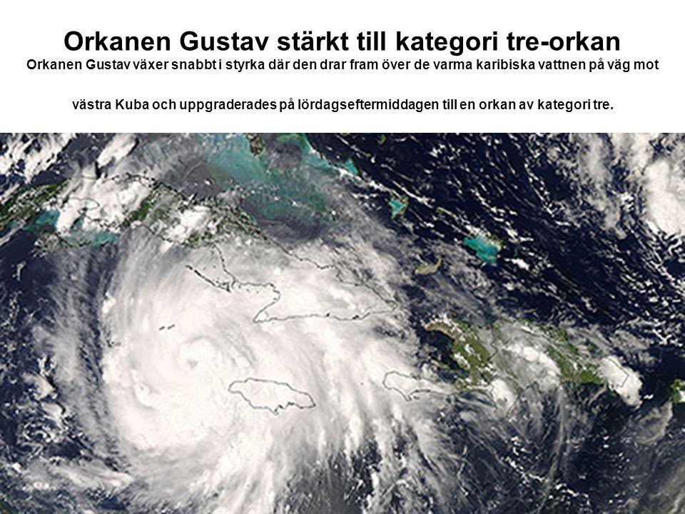 Orkanen Gustav stärkt till kategori tre-orkan Orkanen Gustav växer snabbt i styrka där den drar fram över de varma karibiska vattnen på väg mot västra
