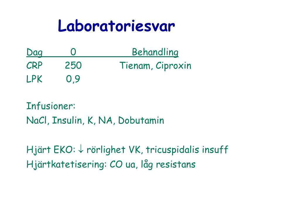 Laboratoriesvar Dag0Behandling CRP250Tienam, Ciproxin LPK0,9 Infusioner: NaCl, Insulin, K, NA, Dobutamin Hjärt EKO:  rörlighet VK, tricuspidalis insu