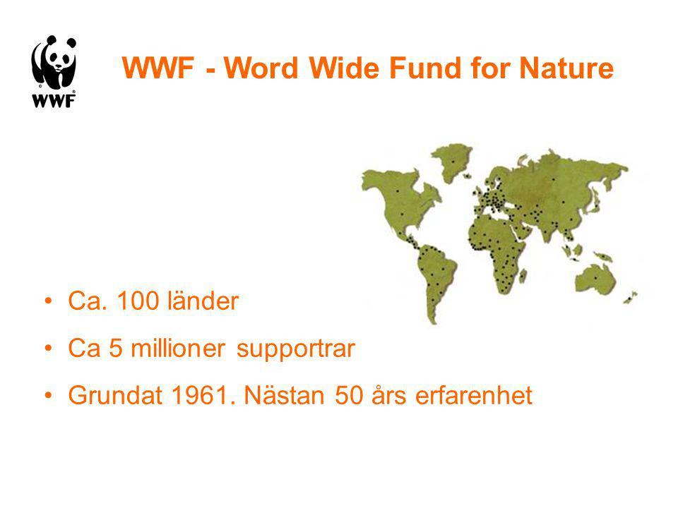 Ca.100 länder Ca 5 millioner supportrar Grundat 1961.