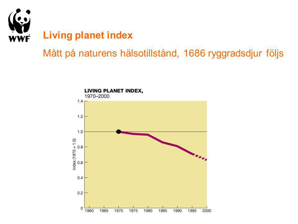 Living planet index Mått på naturens hälsotillstånd, 1686 ryggradsdjur följs