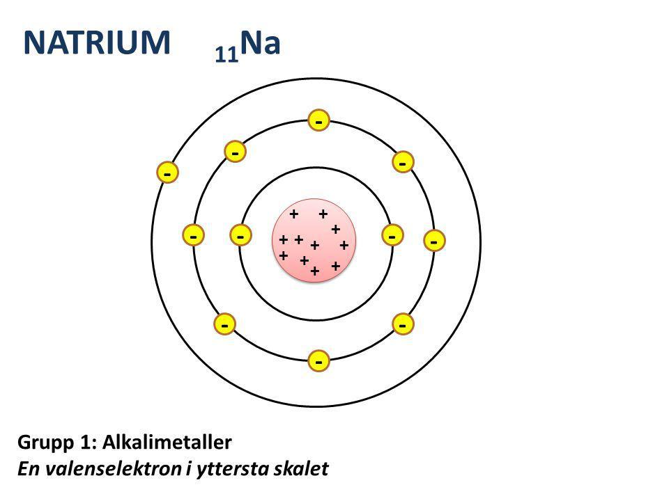 + + ++ + + + + + + + - - - - - - - - - -- NATRIUM 11 Na Grupp 1: Alkalimetaller En valenselektron i yttersta skalet
