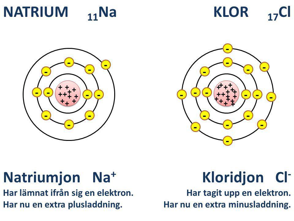 KLOR 17 Cl + + ++ + + + + + + + - - - - - - - - - - NATRIUM 11 Na + + ++ + + + + + + + - - - - - - - - - - - + + + + ++ - - - - - - Natriumjon Na + Ha