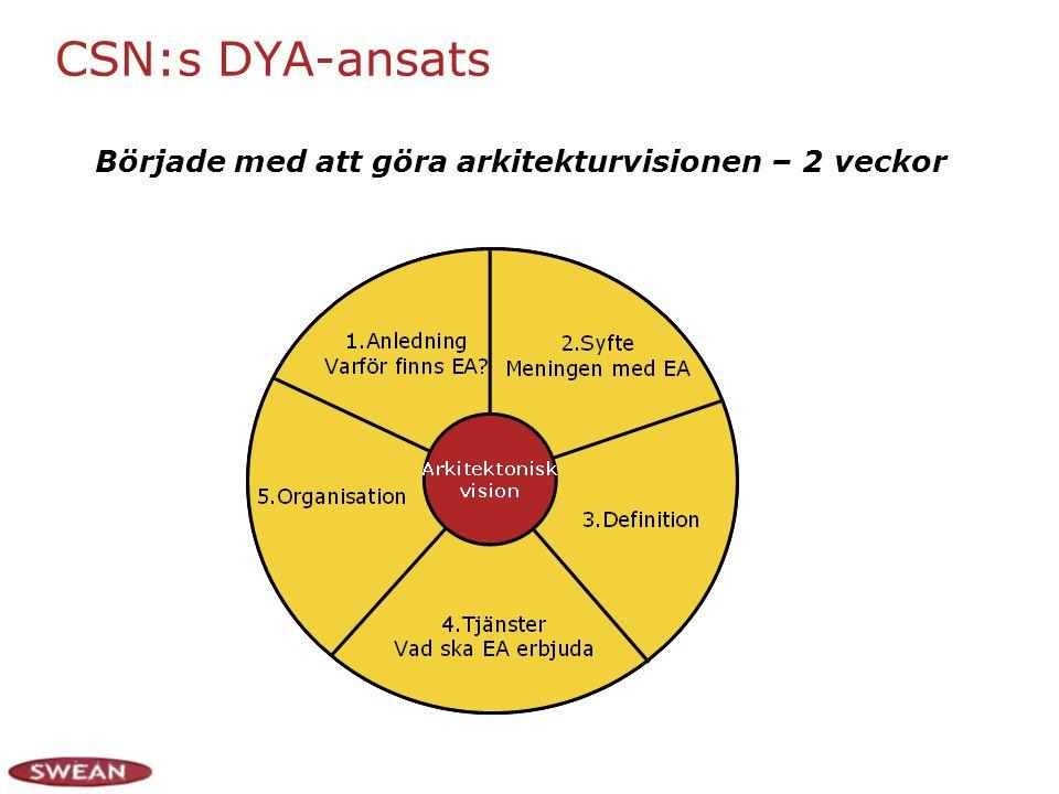 CSN:s DYA-ansats Började med att göra arkitekturvisionen – 2 veckor