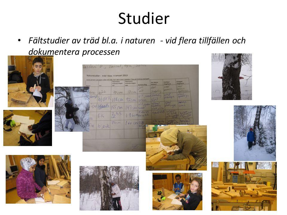 Analyserar foton, målningar och egna bilder av olika träd – vid flera tillfällen