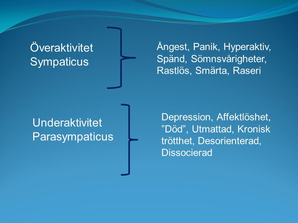 Överaktivitet Sympaticus Ångest, Panik, Hyperaktiv, Spänd, Sömnsvårigheter, Rastlös, Smärta, Raseri Underaktivitet Parasympaticus Depression, Affektlöshet, Död , Utmattad, Kronisk trötthet, Desorienterad, Dissocierad