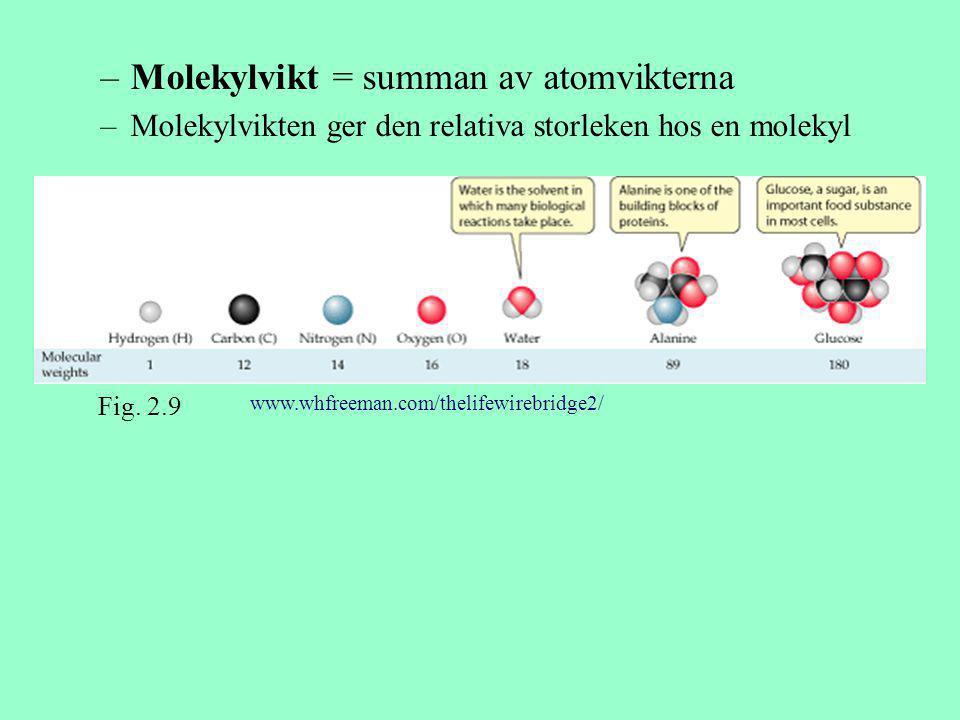 –Molekylvikt = summan av atomvikterna –Molekylvikten ger den relativa storleken hos en molekyl Fig. 2.9 www.whfreeman.com/thelifewirebridge2/