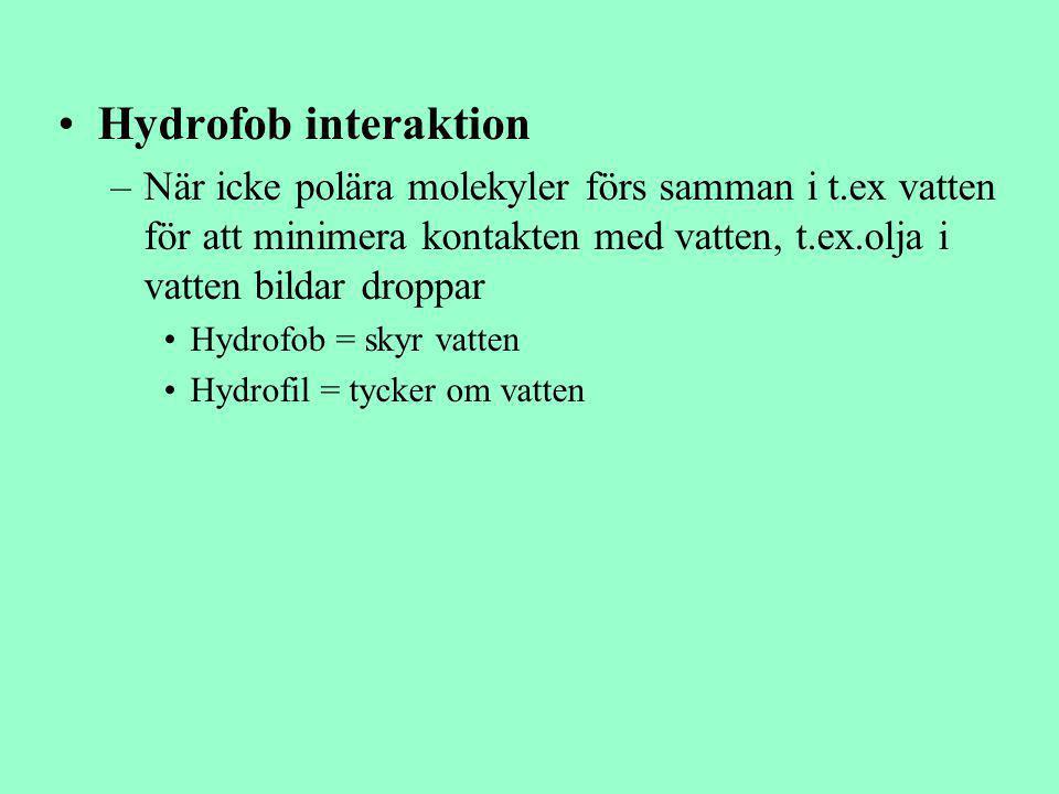 Hydrofob interaktion –När icke polära molekyler förs samman i t.ex vatten för att minimera kontakten med vatten, t.ex.olja i vatten bildar droppar Hyd