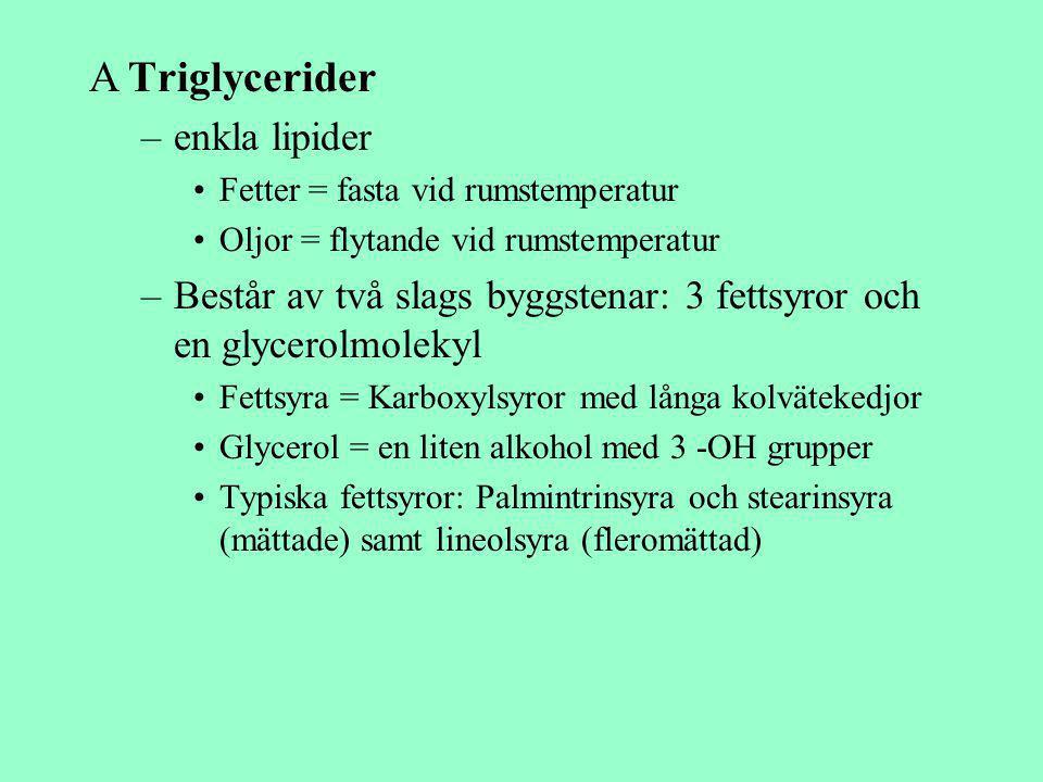 ATriglycerider –enkla lipider Fetter = fasta vid rumstemperatur Oljor = flytande vid rumstemperatur –Består av två slags byggstenar: 3 fettsyror och e