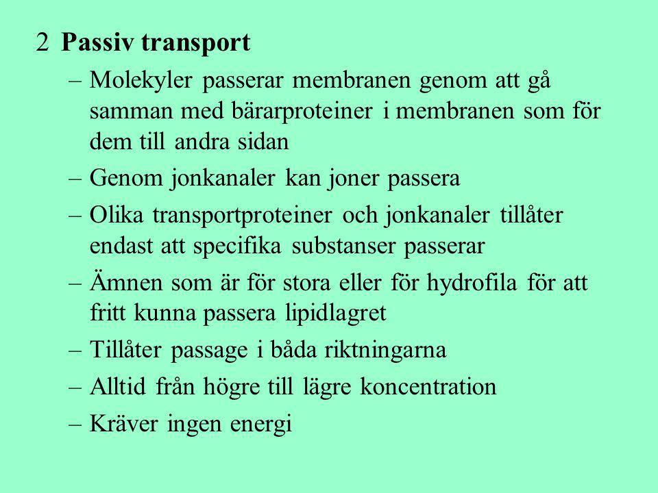 2Passiv transport –Molekyler passerar membranen genom att gå samman med bärarproteiner i membranen som för dem till andra sidan –Genom jonkanaler kan