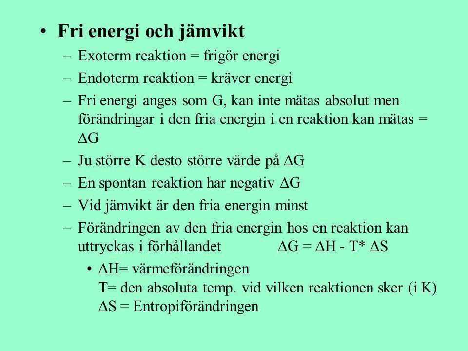 Fri energi och jämvikt –Exoterm reaktion = frigör energi –Endoterm reaktion = kräver energi –Fri energi anges som G, kan inte mätas absolut men föränd