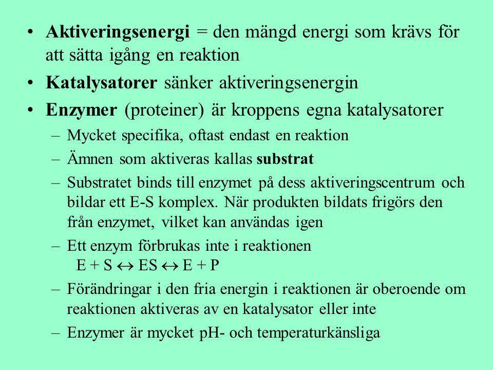 Aktiveringsenergi = den mängd energi som krävs för att sätta igång en reaktion Katalysatorer sänker aktiveringsenergin Enzymer (proteiner) är kroppens