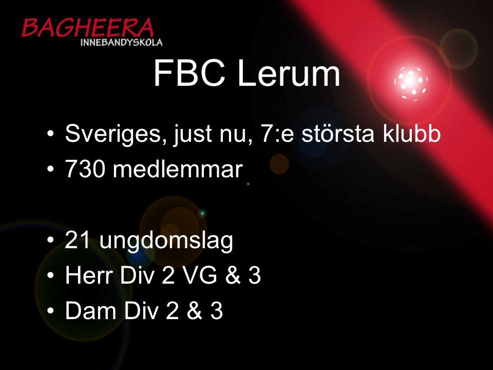 FBC Lerum Sveriges, just nu, 7:e största klubb 730 medlemmar 21 ungdomslag Herr Div 2 VG & 3 Dam Div 2 & 3