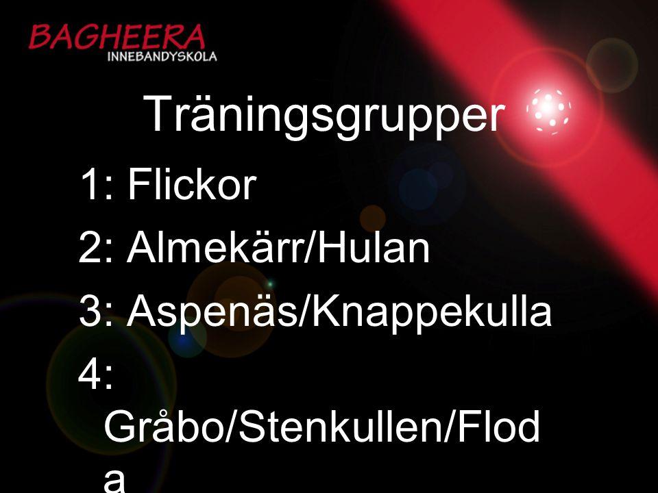 Träningsgrupper 1: Flickor 2: Almekärr/Hulan 3: Aspenäs/Knappekulla 4: Gråbo/Stenkullen/Flod a
