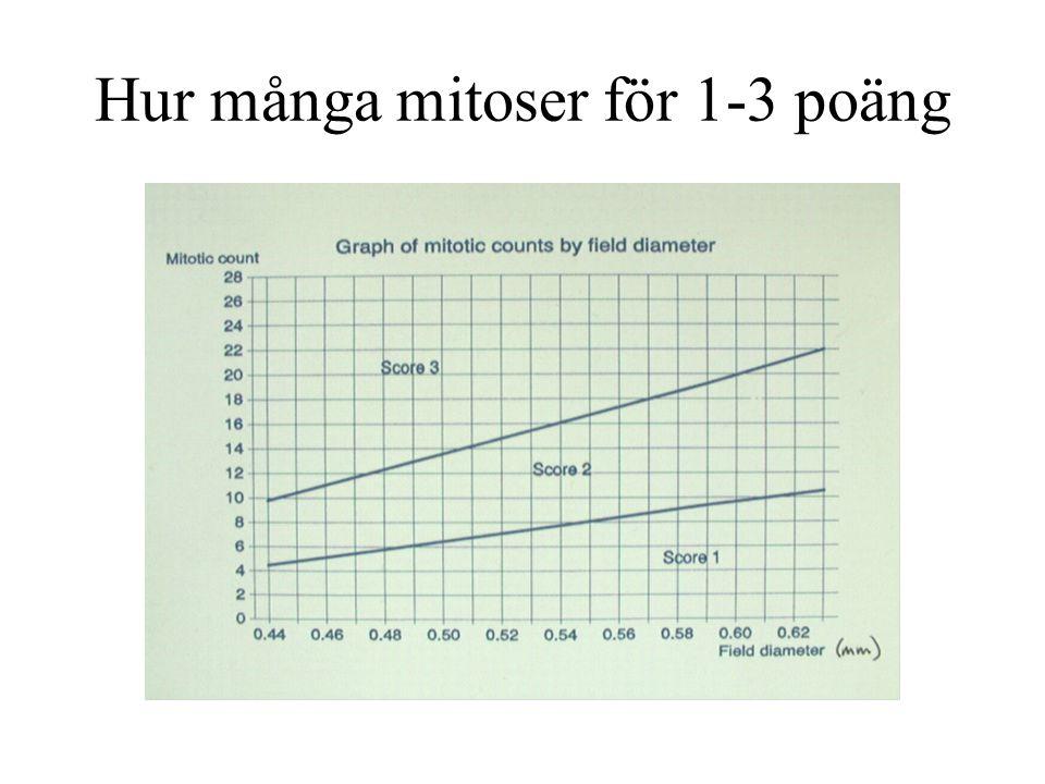Hur många mitoser för 1-3 poäng