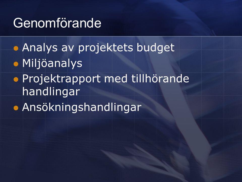 Genomförande Analys av projektets budget Miljöanalys Projektrapport med tillhörande handlingar Ansökningshandlingar