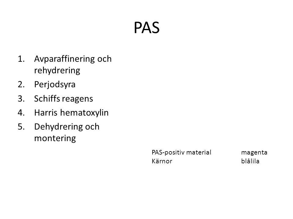 PAS 1.Avparaffinering och rehydrering 2.Perjodsyra 3.Schiffs reagens 4.Harris hematoxylin 5.Dehydrering och montering PAS-positiv material magenta Kär