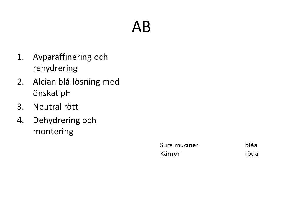 AB 1.Avparaffinering och rehydrering 2.Alcian blå-lösning med önskat pH 3.Neutral rött 4.Dehydrering och montering Sura mucinerblåa Kärnorröda