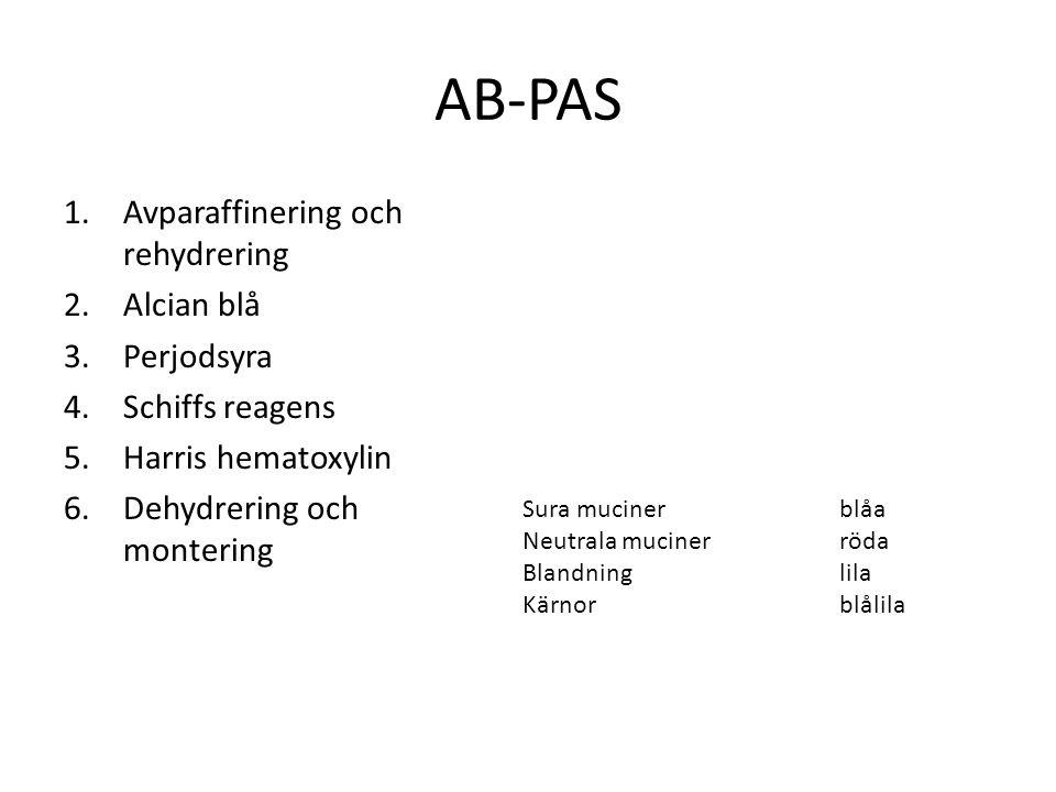 AB-PAS 1.Avparaffinering och rehydrering 2.Alcian blå 3.Perjodsyra 4.Schiffs reagens 5.Harris hematoxylin 6.Dehydrering och montering Sura mucinerblåa