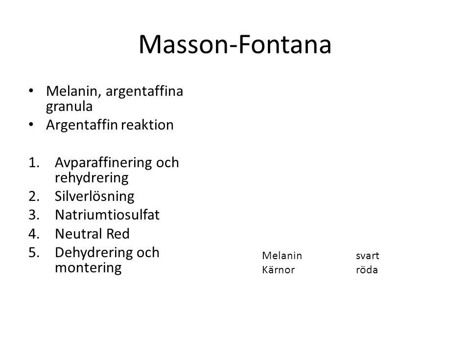 Masson-Fontana Melanin, argentaffina granula Argentaffin reaktion 1.Avparaffinering och rehydrering 2.Silverlösning 3.Natriumtiosulfat 4.Neutral Red 5