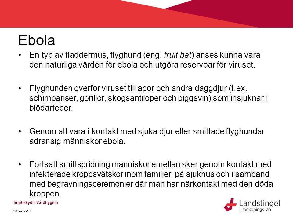 Ebola En typ av fladdermus, flyghund (eng. fruit bat) anses kunna vara den naturliga värden för ebola och utgöra reservoar för viruset. Flyghunden öve