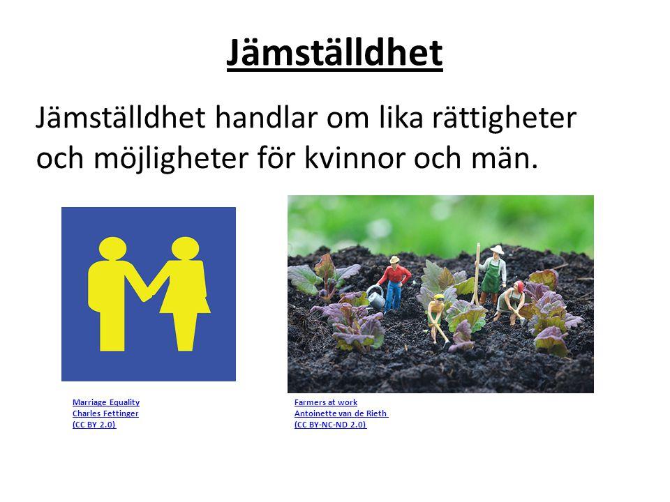 Jämställdhet Jämställdhet handlar om lika rättigheter och möjligheter för kvinnor och män. Farmers at work Antoinette van de Rieth (CC BY-NC-ND 2.0) M