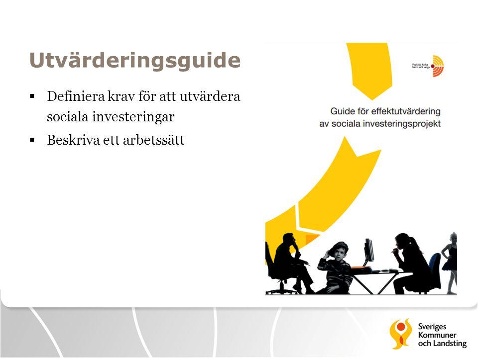 Målgrupp för guiden  Den som ska planera och/eller genomföra utvärdering  Ska beställa en extern utvärdering  Ska utforma en kravprofil för en tjänst eller ett uppdrag med ansvar för uppföljning och utvärdering (av sociala investeringar)  Överväger att inleda ett arbete med sociala investeringar