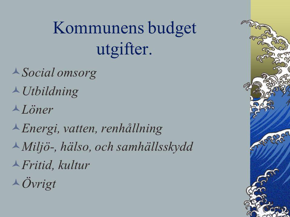 Kommunens budget utgifter. Social omsorg Utbildning Löner Energi, vatten, renhållning Miljö-, hälso, och samhällsskydd Fritid, kultur Övrigt