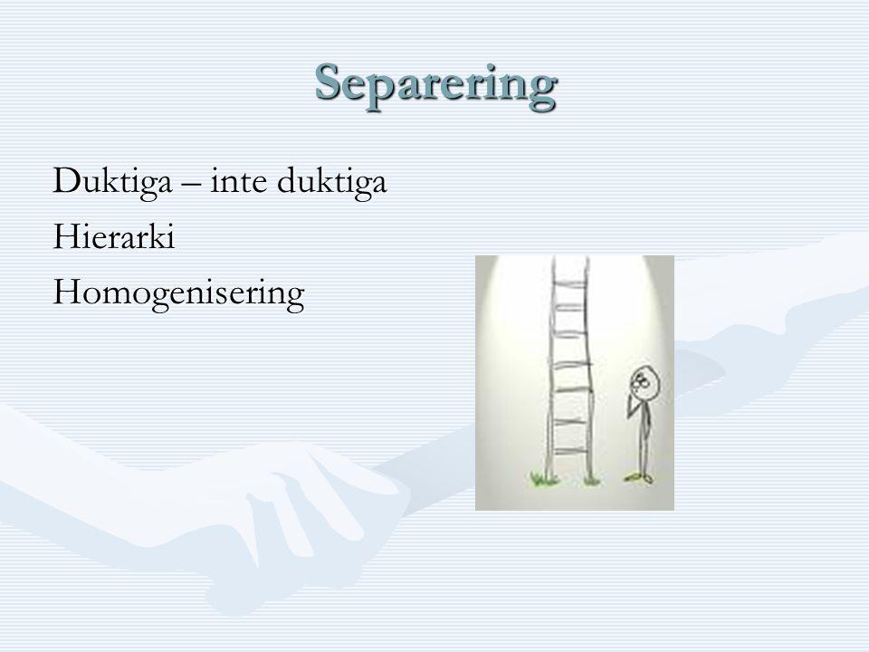Separering Duktiga – inte duktiga HierarkiHomogenisering