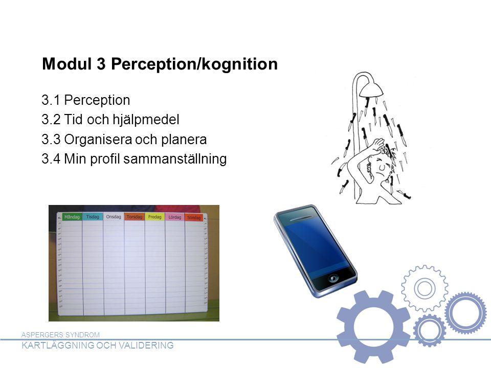 ASPERGERS SYNDROM KARTLÄGGNING OCH VALIDERING Modul 3 Perception/kognition 3.1 Perception 3.2 Tid och hjälpmedel 3.3 Organisera och planera 3.4 Min pr