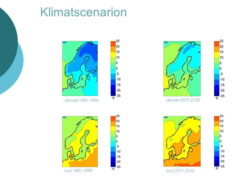 Klimatscenarion Januari 1961-1990 Januari 2071-2100 Juni 1961-1990 Juni 2071-2100