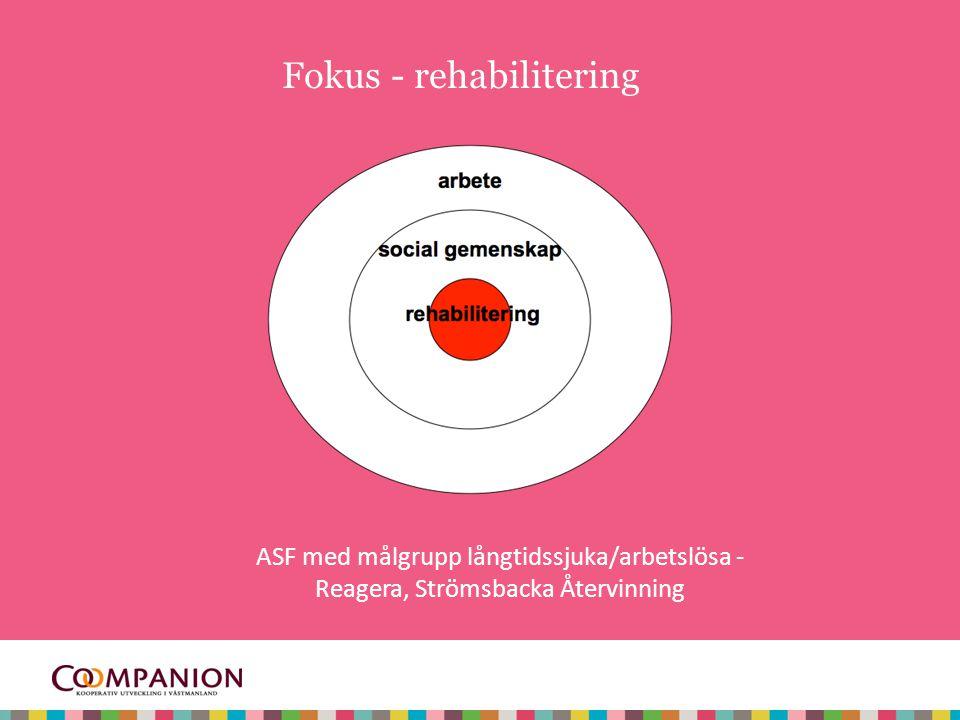 Fokus - arbete ASF med målgrupp funktionshindrade - via Af, Kommunen Accessum, Nya Camera