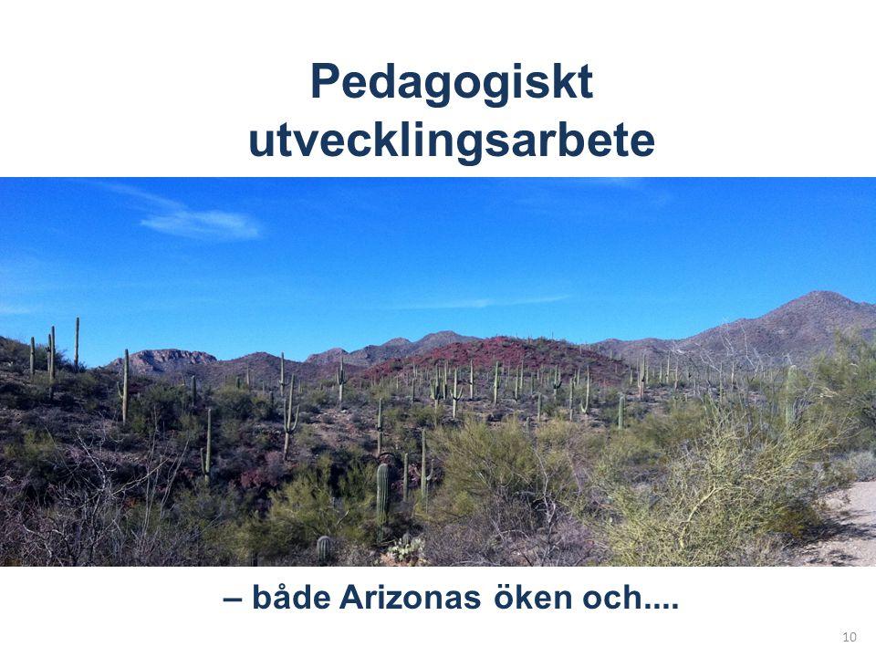 10 Pedagogiskt utvecklingsarbete – både Arizonas öken och....