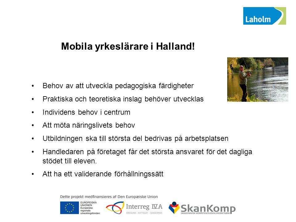 Mobila yrkeslärare i Halland! Behov av att utveckla pedagogiska färdigheter Praktiska och teoretiska inslag behöver utvecklas Individens behov i centr