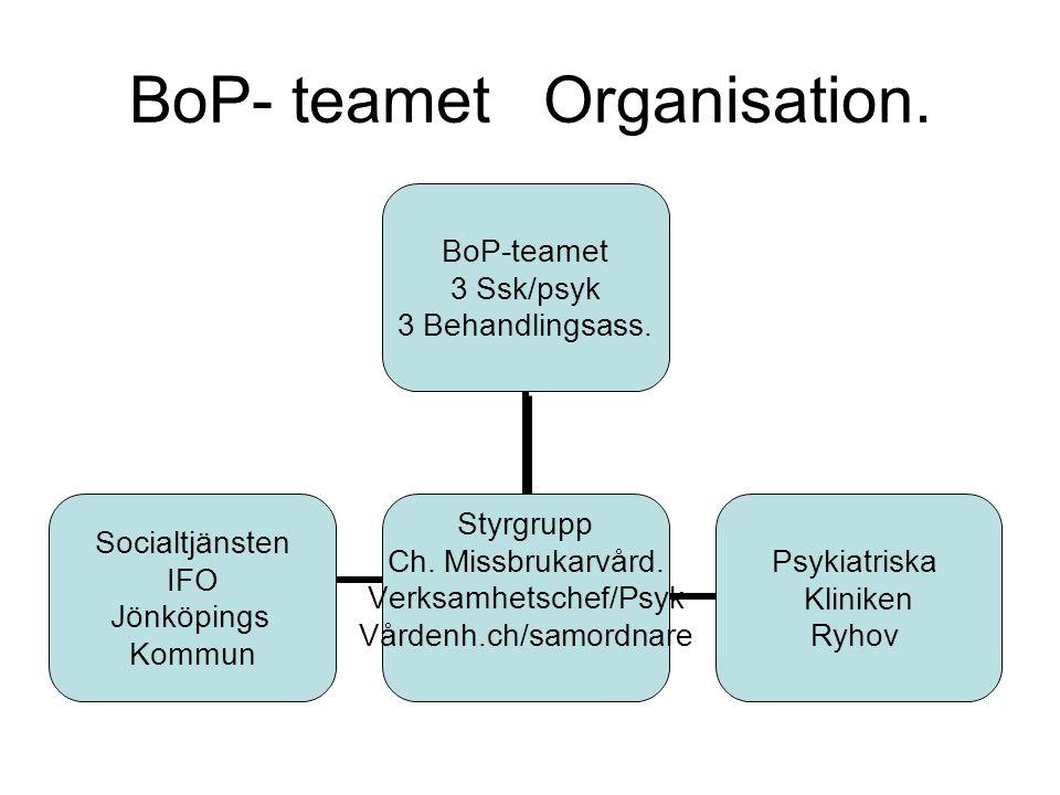 BoP- teamet Organisation.