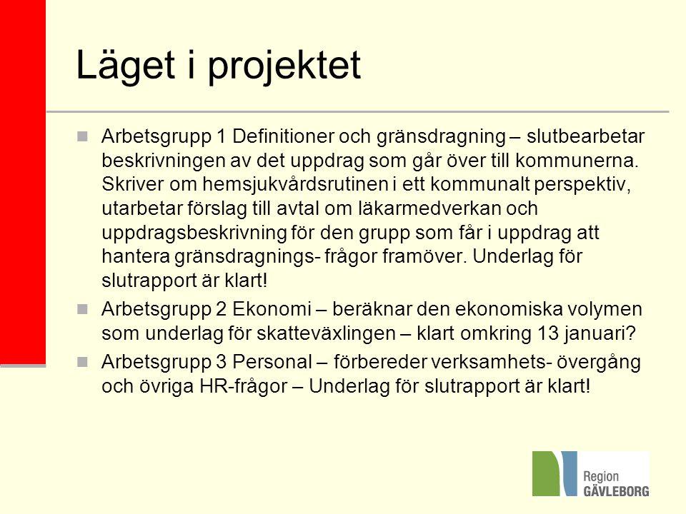 Läget i projektet Arbetsgrupp 1 Definitioner och gränsdragning – slutbearbetar beskrivningen av det uppdrag som går över till kommunerna.