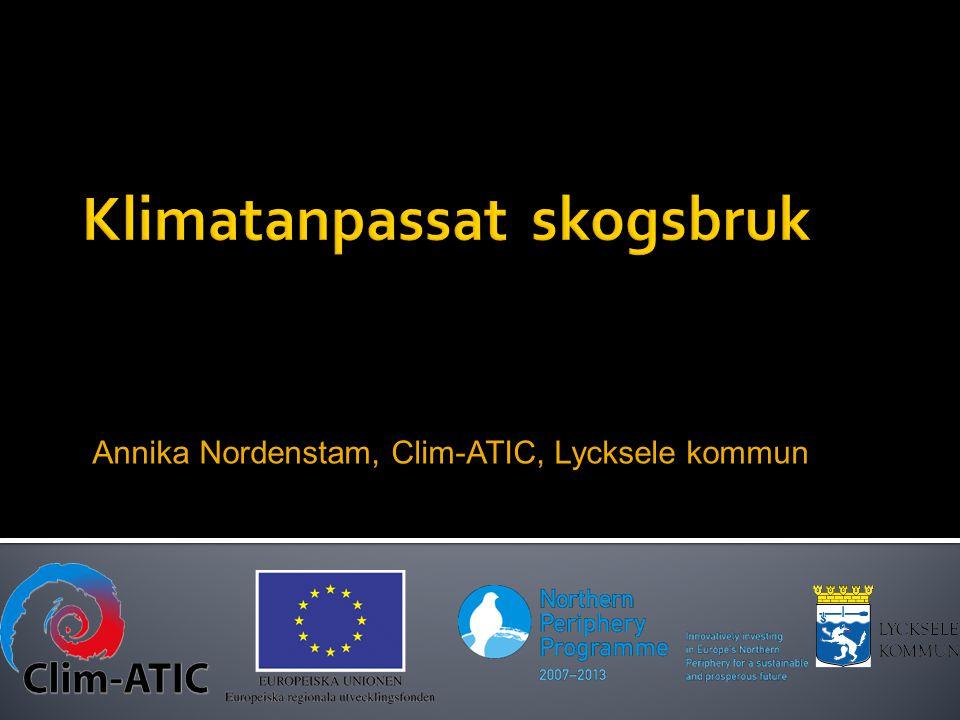 Annika Nordenstam, Clim-ATIC, Lycksele kommun