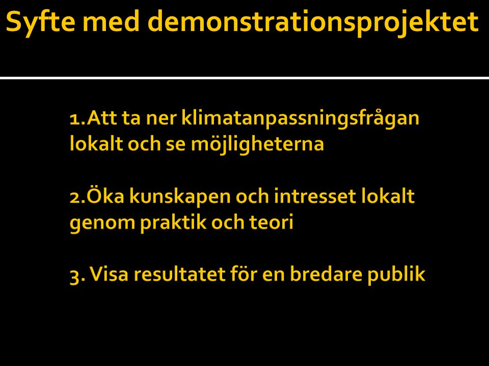 Syfte med demonstrationsprojektet