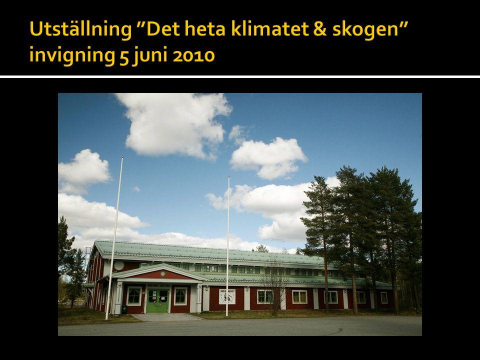  Lycksele kommun har en klimatanpassad skogsbruksplan där konkreta åtgärder kan genomföras om så önskas.