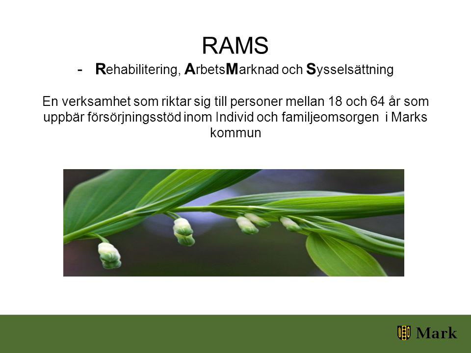 RAMS -R ehabilitering, A rbets M arknad och S ysselsättning En verksamhet som riktar sig till personer mellan 18 och 64 år som uppbär försörjningsstöd inom Individ och familjeomsorgen i Marks kommun