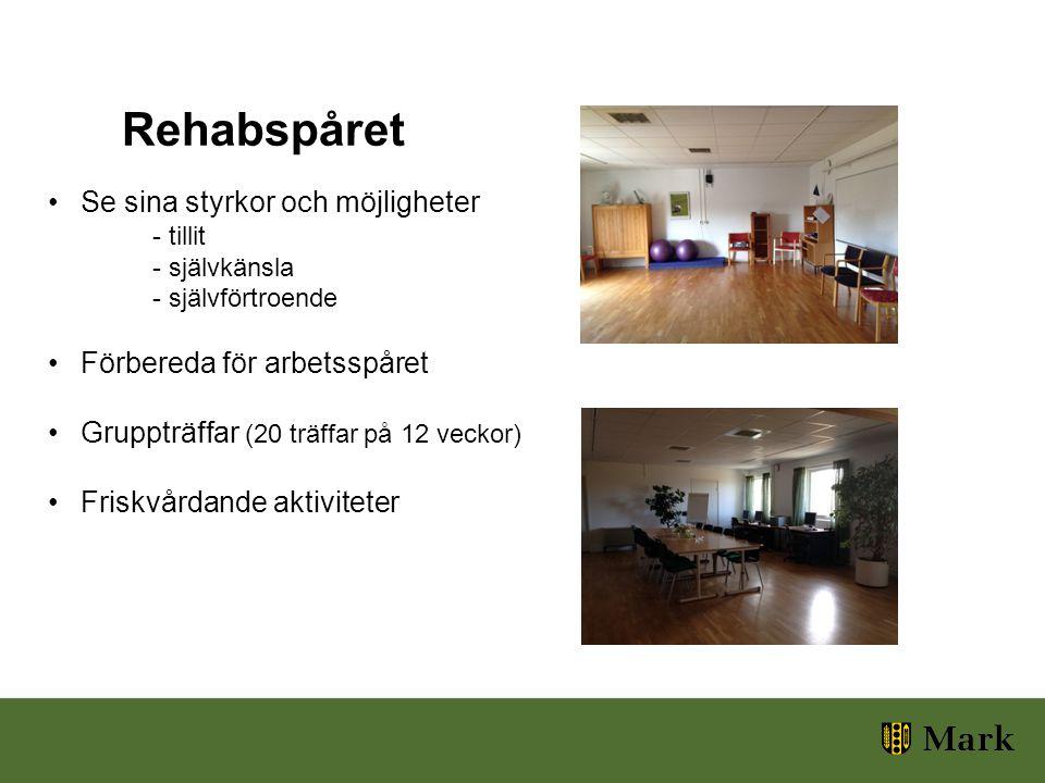 Se sina styrkor och möjligheter - tillit - självkänsla - självförtroende Förbereda för arbetsspåret Gruppträffar (20 träffar på 12 veckor) Friskvårdande aktiviteter Rehabspåret