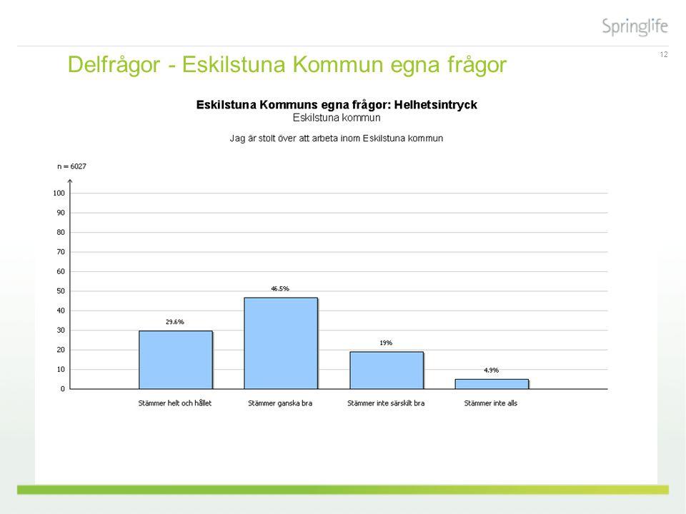 12 Delfrågor - Eskilstuna Kommun egna frågor