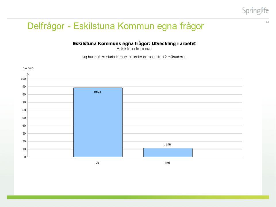 13 Delfrågor - Eskilstuna Kommun egna frågor